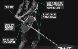 How to do the Barbell Bus Driver Exercise