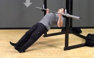 Bodyweight Exercise: Bar Body Row