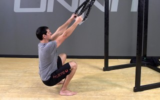 Suspension Exercise: Assisted Squat