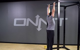 Strict Pull Up Bodyweight Exercise