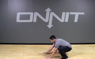 Seated Windshield Wiper Bodyweight Exercise