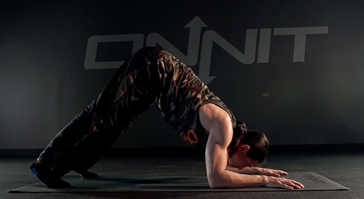 Push Up Variation #5: Bear Dive Bomber