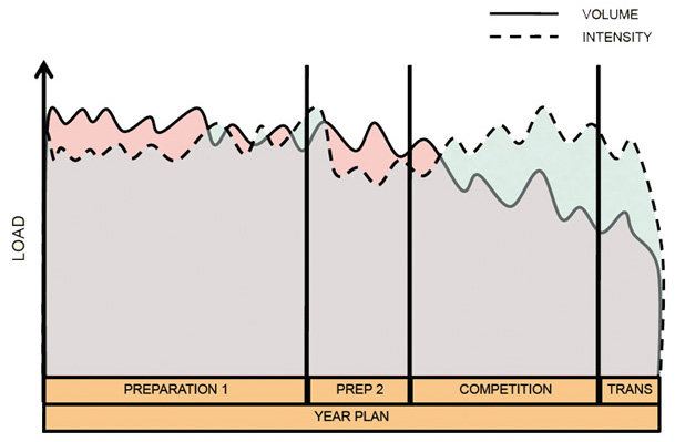 Periodization, Health, and Hypertrophy