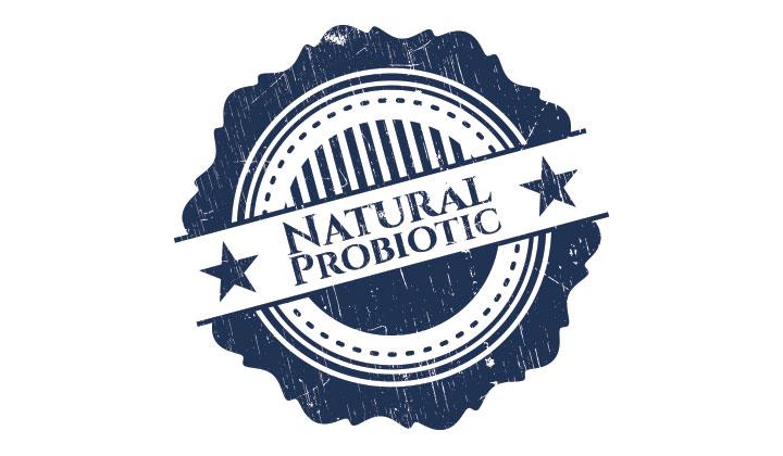 Probiotic Intake