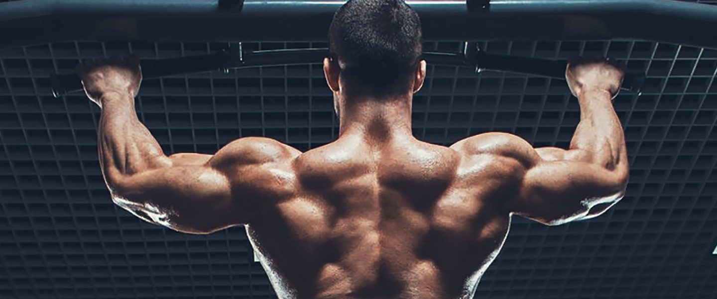 Basic to Beast Complete Bodyweight Workout Program
