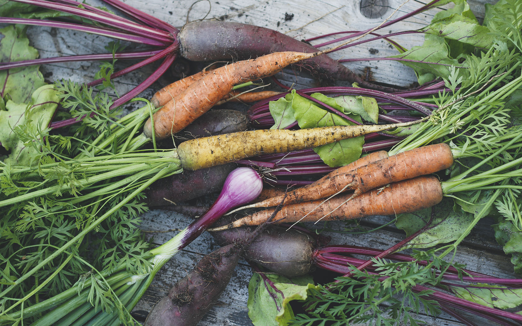 Digging Deeper Into Organic vs. Non Organic Food