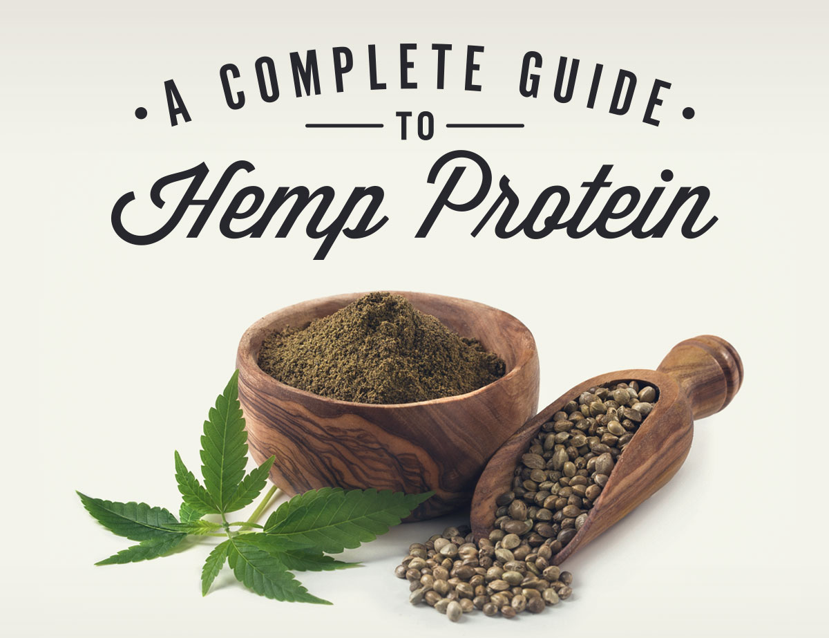 Image result for Hemp Protein