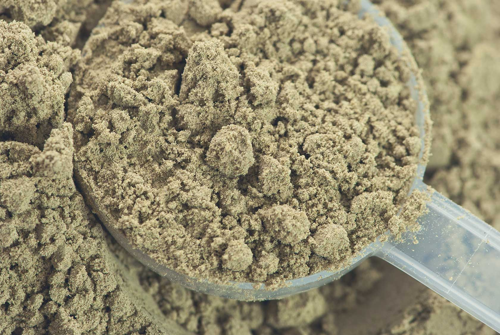 The Complete Guide to Hemp Protein