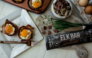 elk recipes